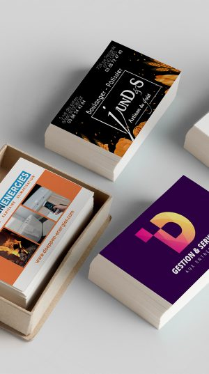 carte de visite nolimits.fr creation graphique design alsace haguenau betschdorf nord publicite communication
